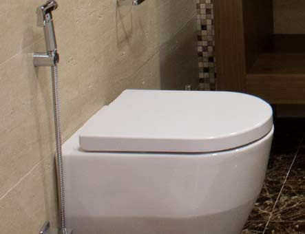 Concealed Cistern Wall Hung WC- Back to Wall Floor Standing WC